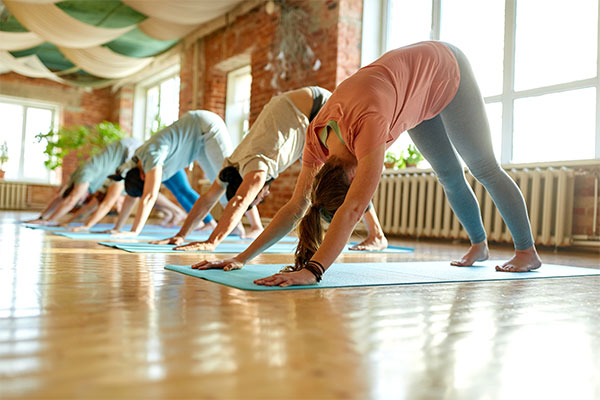 downward dog pilates class Get fit and find your balance in one hit bodyviva