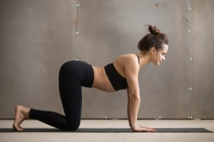 BodyViva-The-Best-Stretches-For-Your-Back-Cow-pose