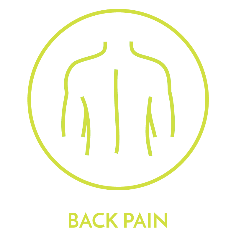 bodyviva physiotherapy treatments back pain