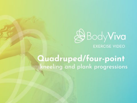 BodyViva exercise video Quadruped four point kneeling and plank progressions