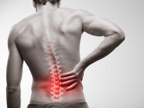 BodyViva back pain from sleep why you need a good mattress